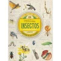 Insectos. Colección de curiosidades
